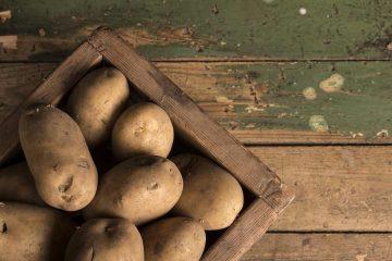 Produženi rokovi za podnošenje zahtjeva za potporu za tipove operacija 8.5.1. i 4.1.1. – ulaganja u skladišne kapacitete za krumpir 3