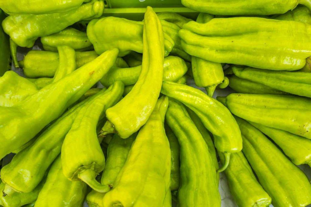 Samoopskrbno poljoprivredno gospodarstvo - sličnosti i razlike sa OPG-om 1